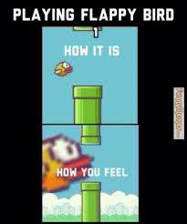 Funny Bird Memes - flappy bird funniest memes top 19 most funny flappy bird
