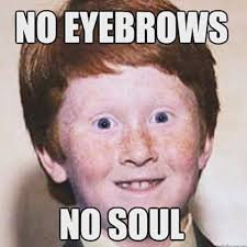 Eyebrows Meme - 60 best brows images on pinterest eyebrow quotes brows and