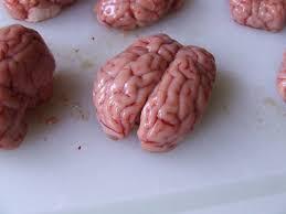 cuisiner de la cervelle de porc cervelles d agneau panées jean luc