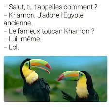 Lui Meme - 25 best memes about toucan toucan memes