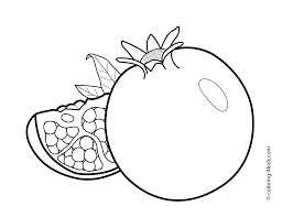 pomegranate fruits coloring pages for kids printable free food