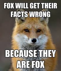 Meme Fox - fun fact fox meme fun