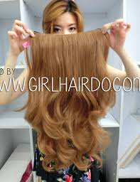 Light Brown Hair Extensions 005w 2730 Full Pc Hair Extension Heat Stylable Very Light Brown