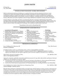 Sales And Marketing Resume Sample by 52 Best Information Technology It Resume Templates U0026 Samples