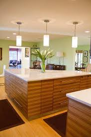 Slab Door Kitchen Cabinets by Overlay Doors Kitchen Contemporary With Set Of Mouser Custom