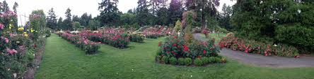 Leach Botanical Garden by Artful Dreamer