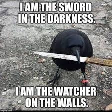 The Darkness Meme - image tagged in dark wings dark words imgflip