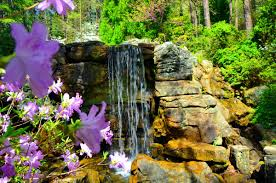 waterfalls summer spring freshness flowers place stones pretty