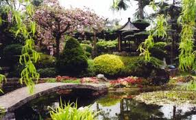 japanese garden pictures pure land japanese garden things to do visit lincoln