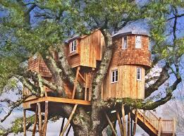 three house how about staying in these spectacular treehouses tree