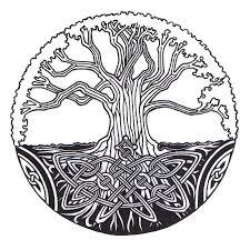 tree of by ppunker on deviantart