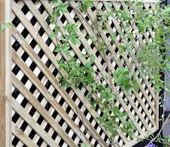 elite lattice trellis 1 8m x 1 2m from grange gardensite co uk