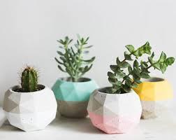 plant on desk desk plant etsy