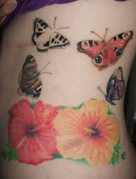 hibiscus butterflies n hibiscus designs