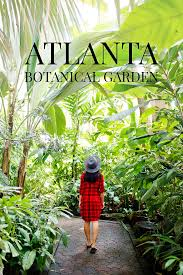 Atlanta Botanical Gardens Membership Chihuly In The Garden At The Atlanta Botanical Garden