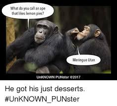 Ape Meme - what do you call an ape that likes lemon pies meringue utan