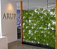 wall garden indoor green wall for your office why vertical wall gardens are the new