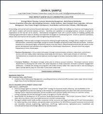 executive resume pdf curriculum vitae pdf gratis millbayventures