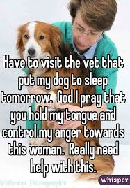 put dog to sleep to visit the vet that put my dog to sleep tomorrow god i pray that you