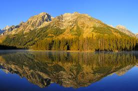 Wyoming top travel blogs images Enjoy natures love at grand teton national park wyoming a png