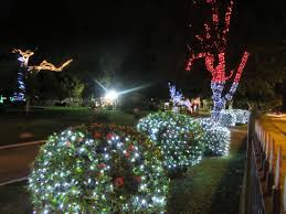 Botanical Gardens Christmas Lights by The Best Destinations In Trinidad To Get Into The Spirit Of
