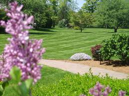 Grass Roots Landscaping by Grass Roots Landscape Maintenance