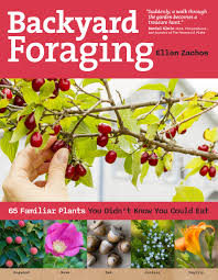 backyard foraging 65 familiar plants you didn u0027t know you could