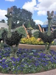 disney epcot flower u0026 garden festival 2017 picture of epcot