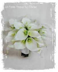 Calla Lily Bouquets Calla Lily Bouquet Set 12 Stems From Trees To These