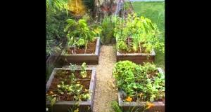 small home garden ideas organicgardeningforyou com