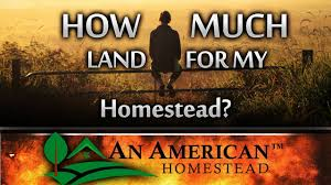 How Many Square Feet In Half An Acre How Much Land Do I Need For Homesteading Youtube