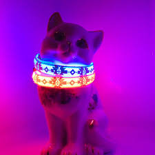 glow lights glow cat collar small pet collars w led safety light lights