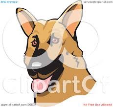 belgian sheepdog clipart clipart of a cartoon muscular super hero shepherd standing over a