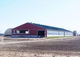 robotic dairy barns dairy barns ontario post farm structures