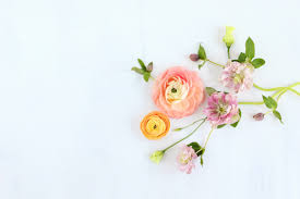 digital blooms march 2018 free desktop wallpapers justinecelina digital blooms april 2017 free desktop wallpapers digital