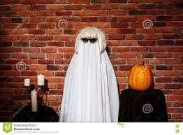halloween party background ghost in sunglasses and wig posing over brick background