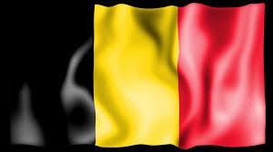 My National Flag Belgium National Flag Jigsaw Puzzle Animation Motion Background