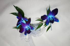 blue orchid corsage sammiah s hairstyles for hairstyles for