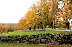 park archives new england today