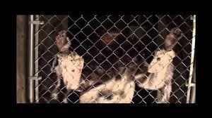 fpb716 fence psycho banger poison props pneumatic animatronic