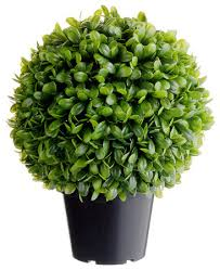 Silk Flower Plants - silk plants direct jade plant topiary ball pack of 2