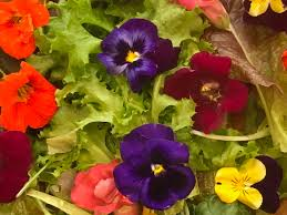 Edible Flowers How To Cook With Edible Flowers 5280