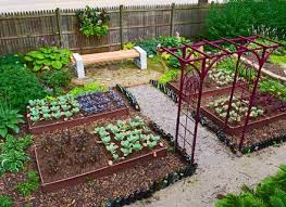 chic garden plans and layouts vegetable garden designs layouts