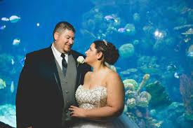 columbus zoo wedding metropolitan weddings chris columbus oh diy