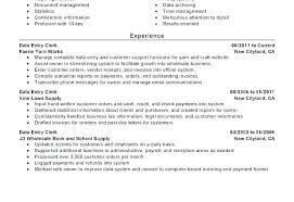 professional summary for resume exles professional summary resume sle
