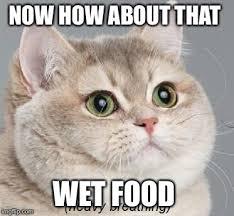 Wet Meme - heavy breathing cat meme imgflip