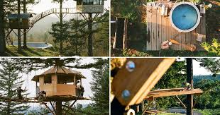 Treehouse Fostering Agency - is this world u0027s best treehouse 110k pad has wifi tub and