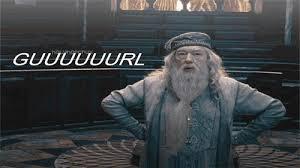 Sassy Meme - dumbledore guuuuuurl harry potter know your meme