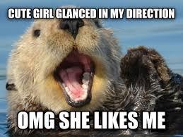 Sea Otter Meme - livememe com overly optimistic sea otter