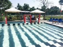 6 dog swimming pools in singapore vanillapup